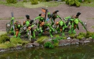 Trident Realms of Neritica Riverguard